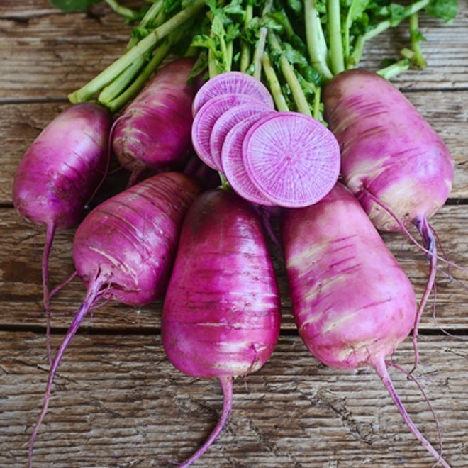 purple daikon radishes