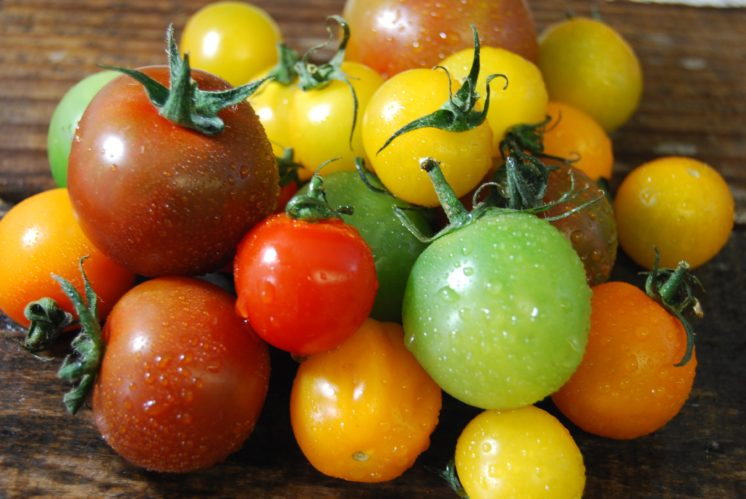 cherry tomatoes colors