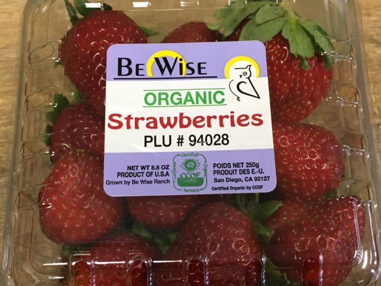organic strawberries from san diego