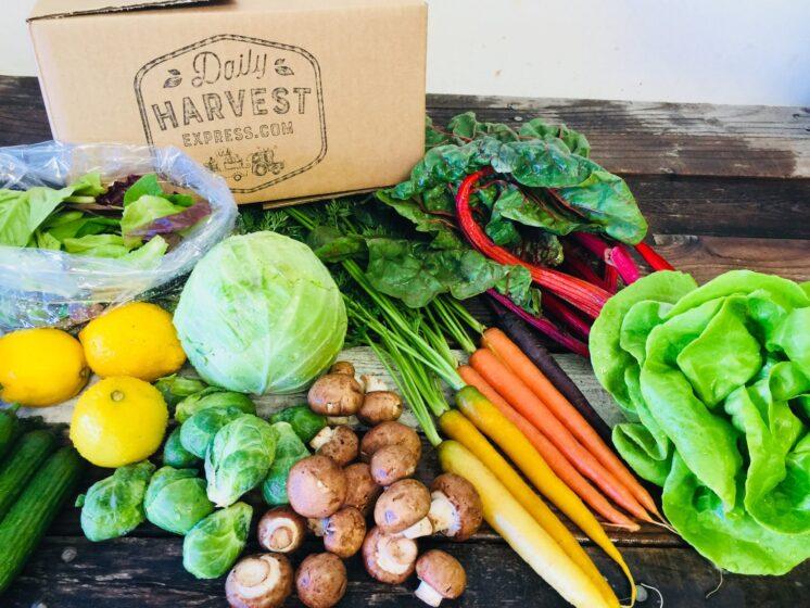 organic veggie box