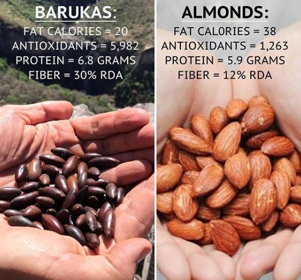 Barukas nuts versus almonds...