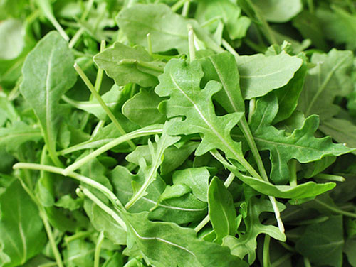 Astro arugula - why and how to eat arugula