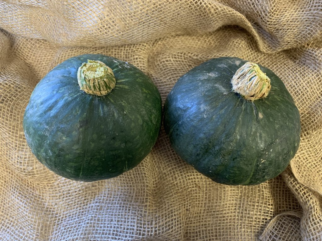 Organic Kabocha squash from Be Wise ranch, included in a recent Daily Harvest Express FarmBox.