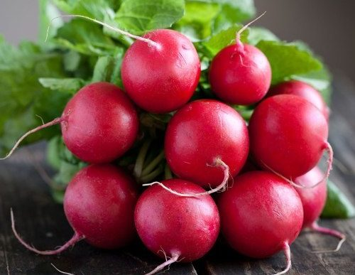Good things to know about the humble radish