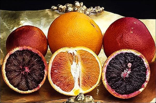 blood orange varieties