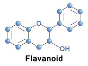 flavanoid