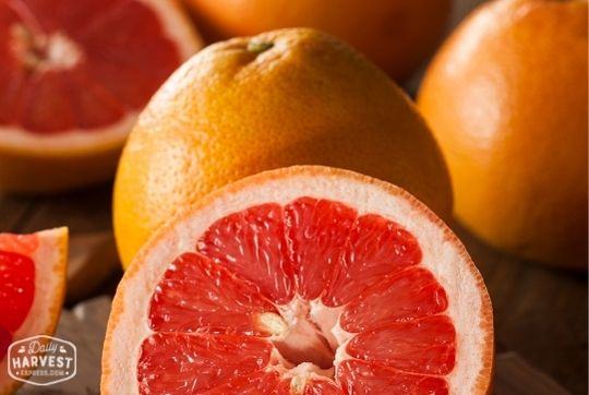 Grapefruit-Ruby