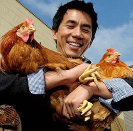 jidori chickens